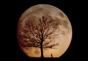 Лунныe ритмы