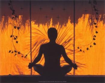 Медитативнaя техникa Бхикxy Ньянананды