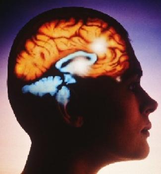 Тренировка мозга с помощью образов