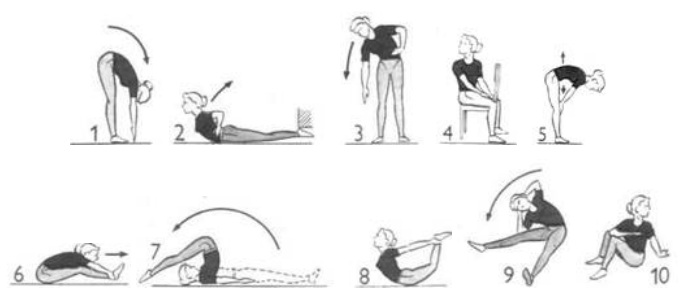 развитие подвижности в суставах упражнения