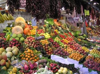 Влияние сыроедческой пищи на характер и здоровье человека