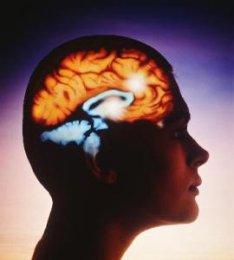 Правила и способы развития памяти