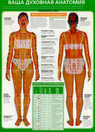 Ваша духовная анатомия. Энергетические меридианы. Часть 2