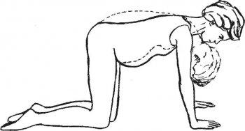 Комплекс упражнений для безболезненных родов